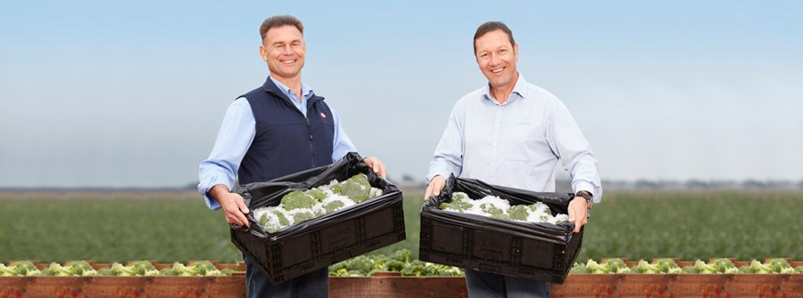 Coles transports broccoli sustainably
